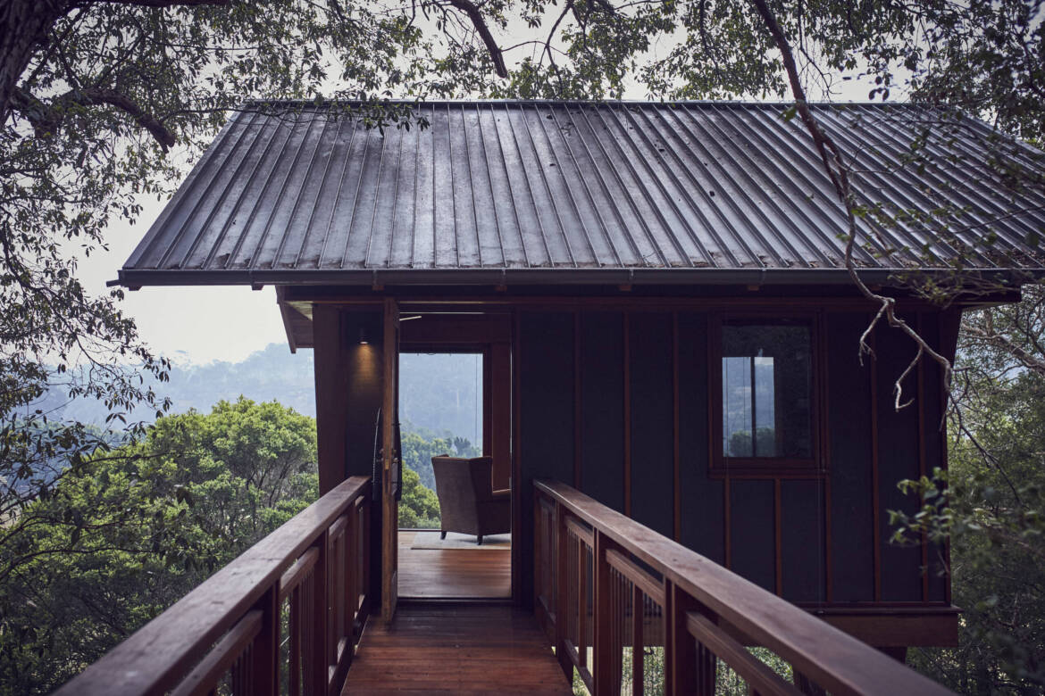 View-from-tree-house-scaled.jpg